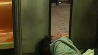 Man passed out on doors of subway - Video