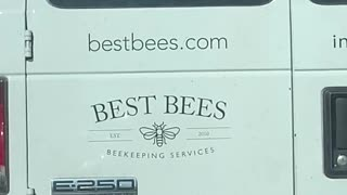 I Think You Spilled Your Bees
