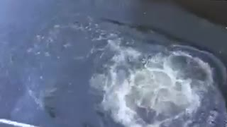 Guy in underwear jumping into water canal off of bridge balcony - Video