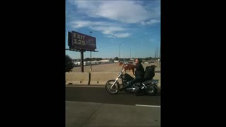 Biker rides with dog on motorcycle