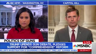 Senator Calls for Ban On 'Gas-Assisted' Guns On MSNBC — Forgets That Doesn't Exist - Video