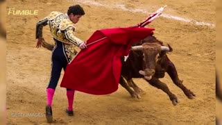 Mexican Bullfighter Takes it UP THE A** - Video