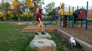 Backflip at the park