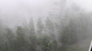 Torrential Downpour in Izhevsk - Video