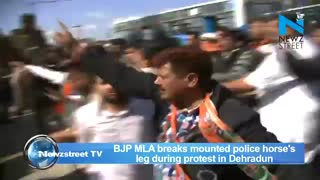BJP MLA Attacks Police Horse With Lathi, Breaks Its Leg - Video