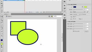 Video Aulas Flash CS4 - Video