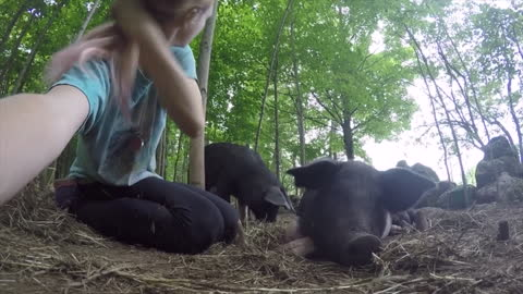 Girl's face was covered in mud after pig kisses