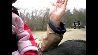 Hippotherapy with Children with Autism or Sensory Processing Disorders  - Video