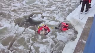 US Coast Guard rescues dog in icy waters - Video