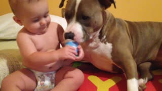Baby helps family dog eat yogurt