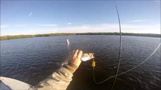 Guy Catches Fish With a Lego
