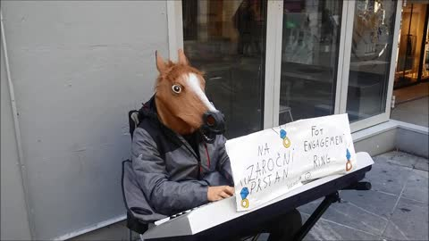 Street-performing 'horse' plays piano for very noble reason