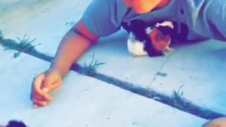 Twins Teach Animals The Hold Hands Game