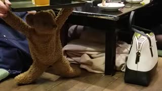 Funny Teddy Bear Delivers Drinks