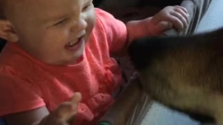 baby howls like a wolf