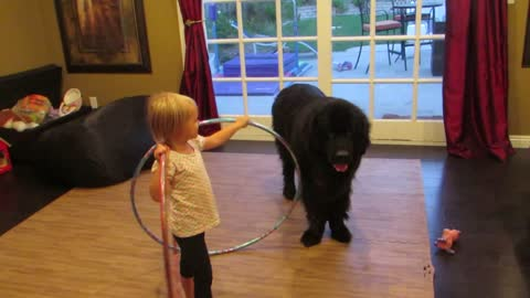 Determined Girl Tries To Teach Her Big Black Pooch To Hula Hoop