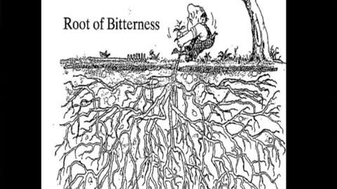 NFBC Sunday - Root of Bitterness, Part 1