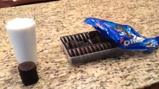 Stop-motion: Cookie man does awesome milk dunk