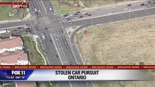CHP pursuit of Stolen Vehicle Suspect Ends with a K9 Takedown