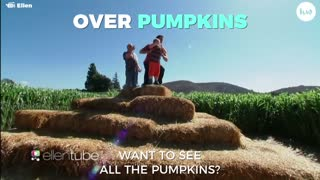 Have We Hit Peak Pumpkin? - Video