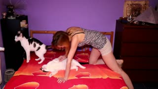 Woman documents struggles of bed-making with cats - Video