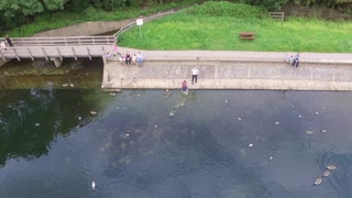Guy Saves Drone From Falling Into The Water - Video