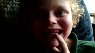 Boy's tooth fairy is a parrot - Video