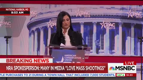 NRA's Dana Loesch Says Florida Shooting Survivors Wanted to 'Burn Her'