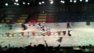 Medieval Scrappin' : Jousting Session