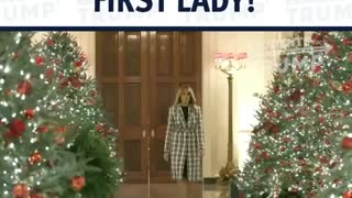 First Lady Melania Trump with the Amazing display at the whitehouse
