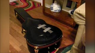 Cat Gets Trapped In Guitar Case