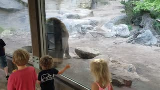 Kids At The ZOO Learn A Very Important Lesson About Bear Toilet Habits