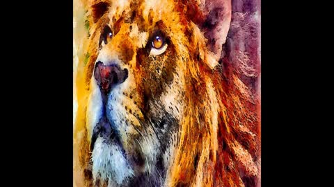 The Lion The Leader and The Sage Part 3 The 5 Levels