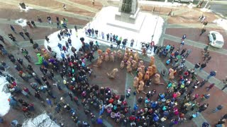 Dinosaur Takeover at Monument Square - Video