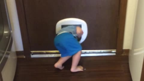 Toddler Escapes Through Cat Door
