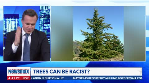 Terrence Williams Goes Off On RACIST TREES on Newsmax