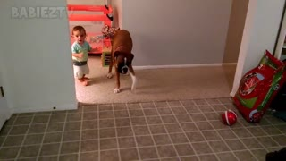 Adorable babies playing with dogs and cats