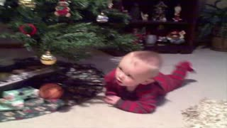 The ultimate christmas race between little boy and big tree