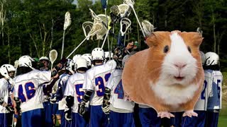 High School Lacrosse Team Sacrifices Guinea Pig, Smears Blood on Faces in Pre-Game Ritual - Video