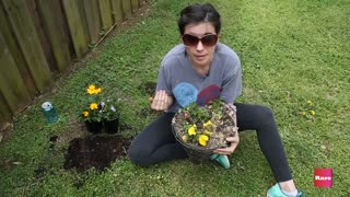 Simple Hanging Basket with Elissa the Mom | Rare Life - Video