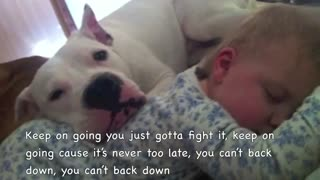 Pit Bull's Don't Cry - Video