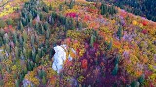 Magnificent Drone Footage Captures Awesome Fall Colors
