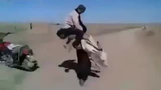 Strong man can lift a donkey - Video