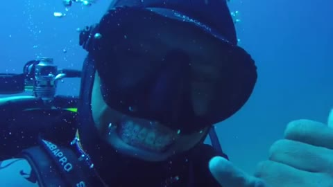 Diver Takes a Dip with Sharks