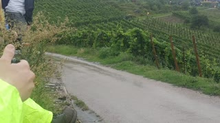 Tanak Nearly Crashes at WRC Rally in Germany - Video