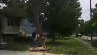 A Man Cuts Down A Tree And It Falls On His House - Video