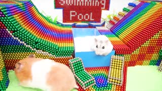 YP STUDIO - Hamster Playground Swimming Pool Water Slide With Magnetic Balls (Satisfying)