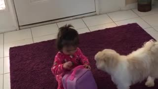 Dog don't want little girl go to school