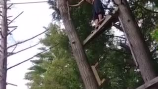 Shirtless black swim shorts back flip bellyflop off ropeswing - Video