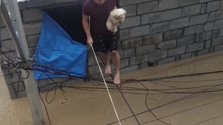 Pets Rescued From Fierce Flooding